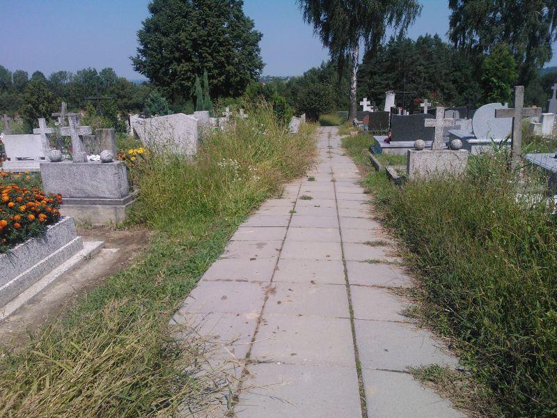 cmentarz 4